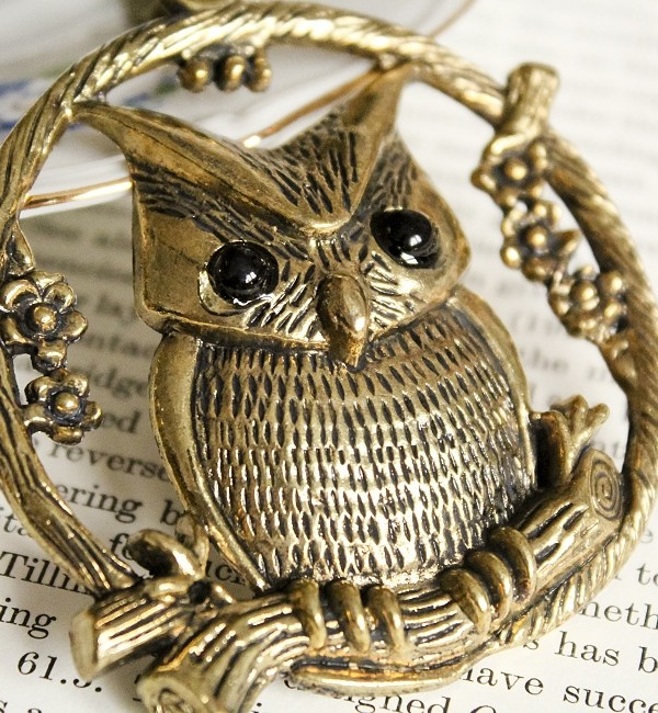 owl-b-1
